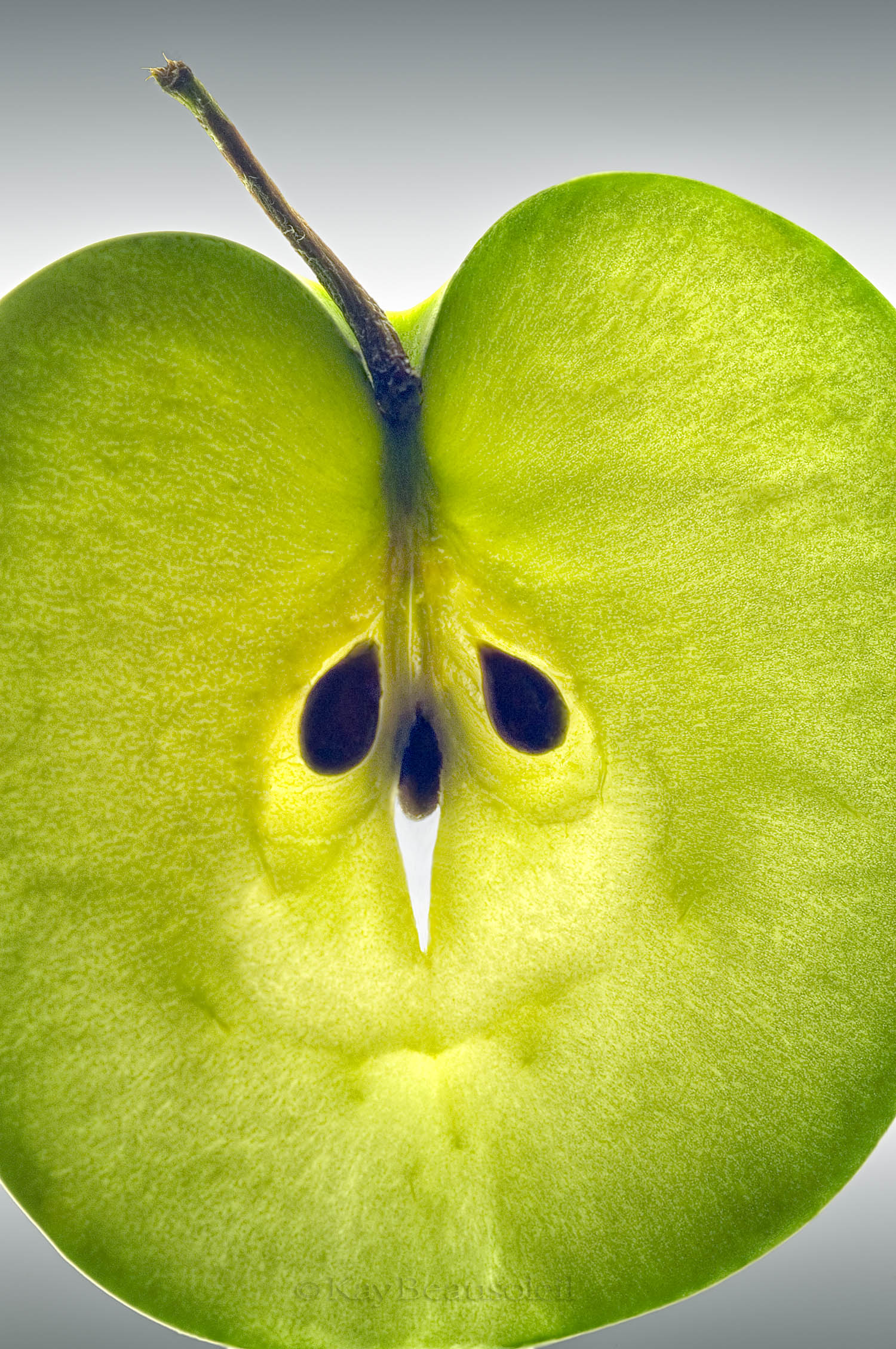 Up Close and Personal:  GRANNY SMITH