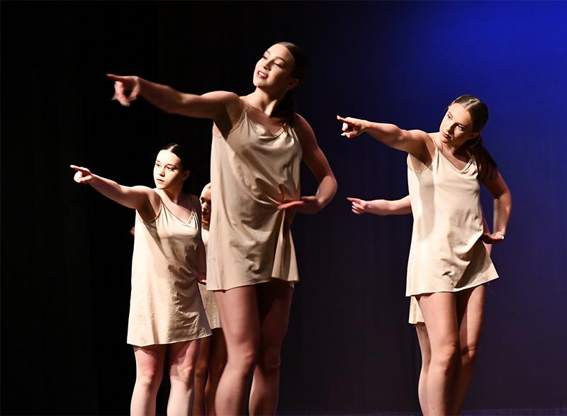 Senior - Dance Company