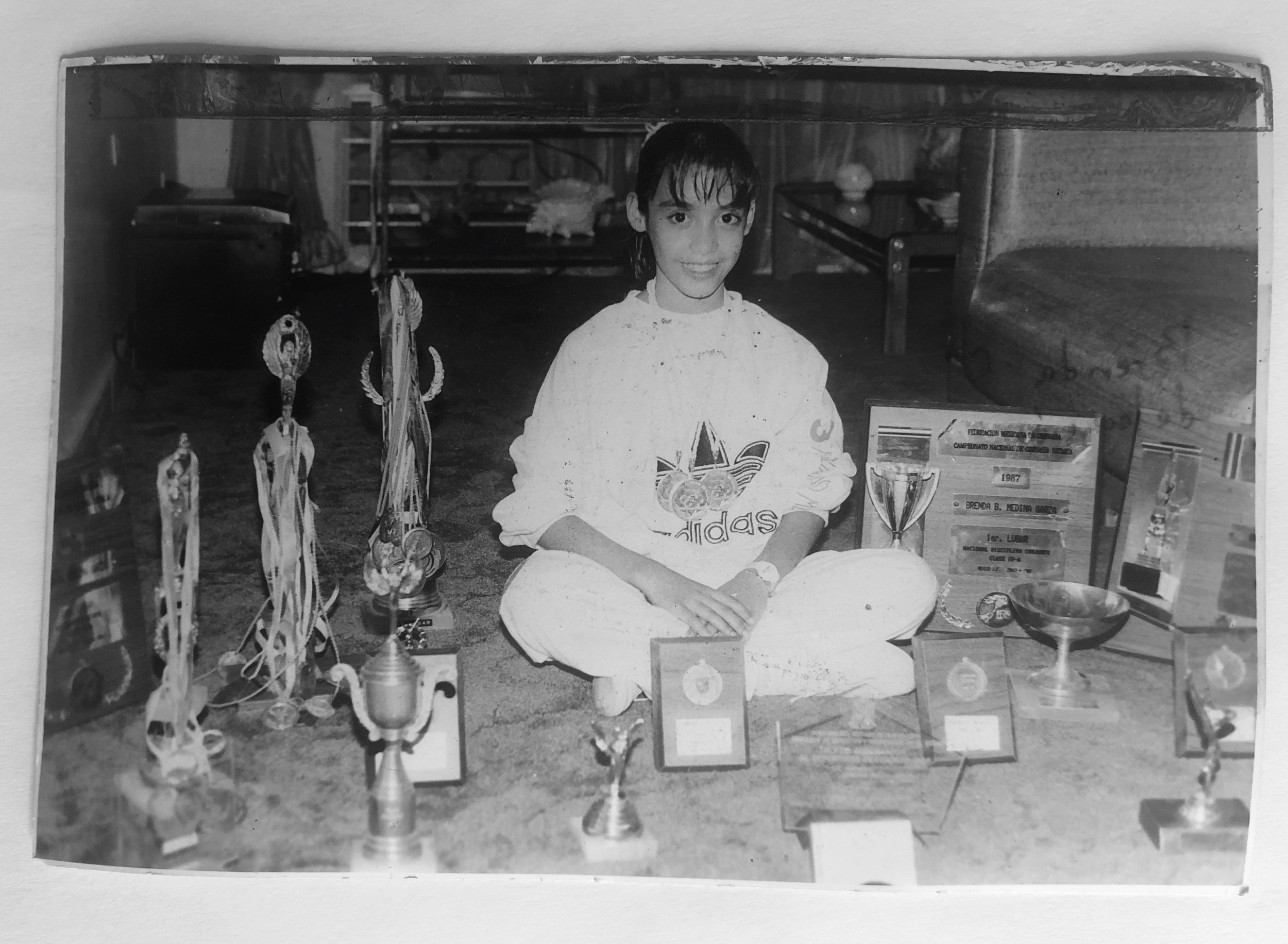 1989, trofeos y medallas