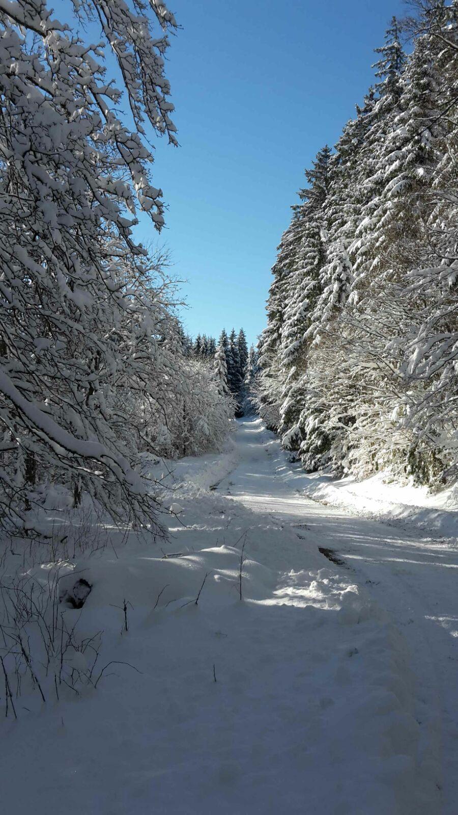 FB sneeuwfoto3.jpg