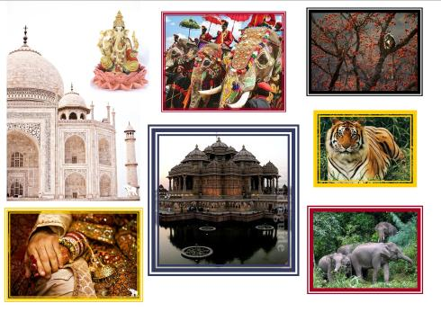 Images of different places in india with tiger, elephants and a monkey