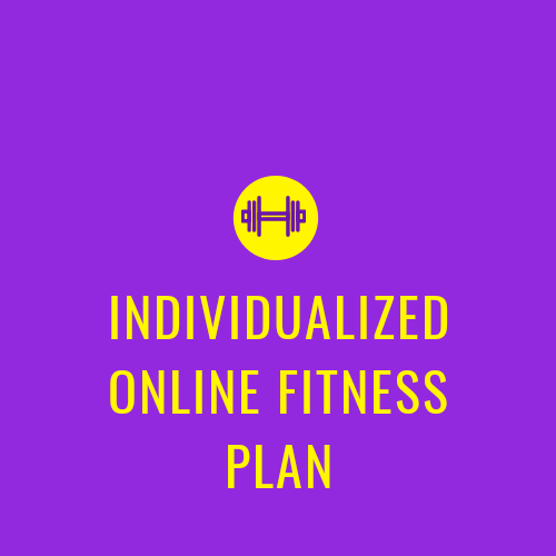 INDIVIDUALIZED ONLINE FITNESS PLAN