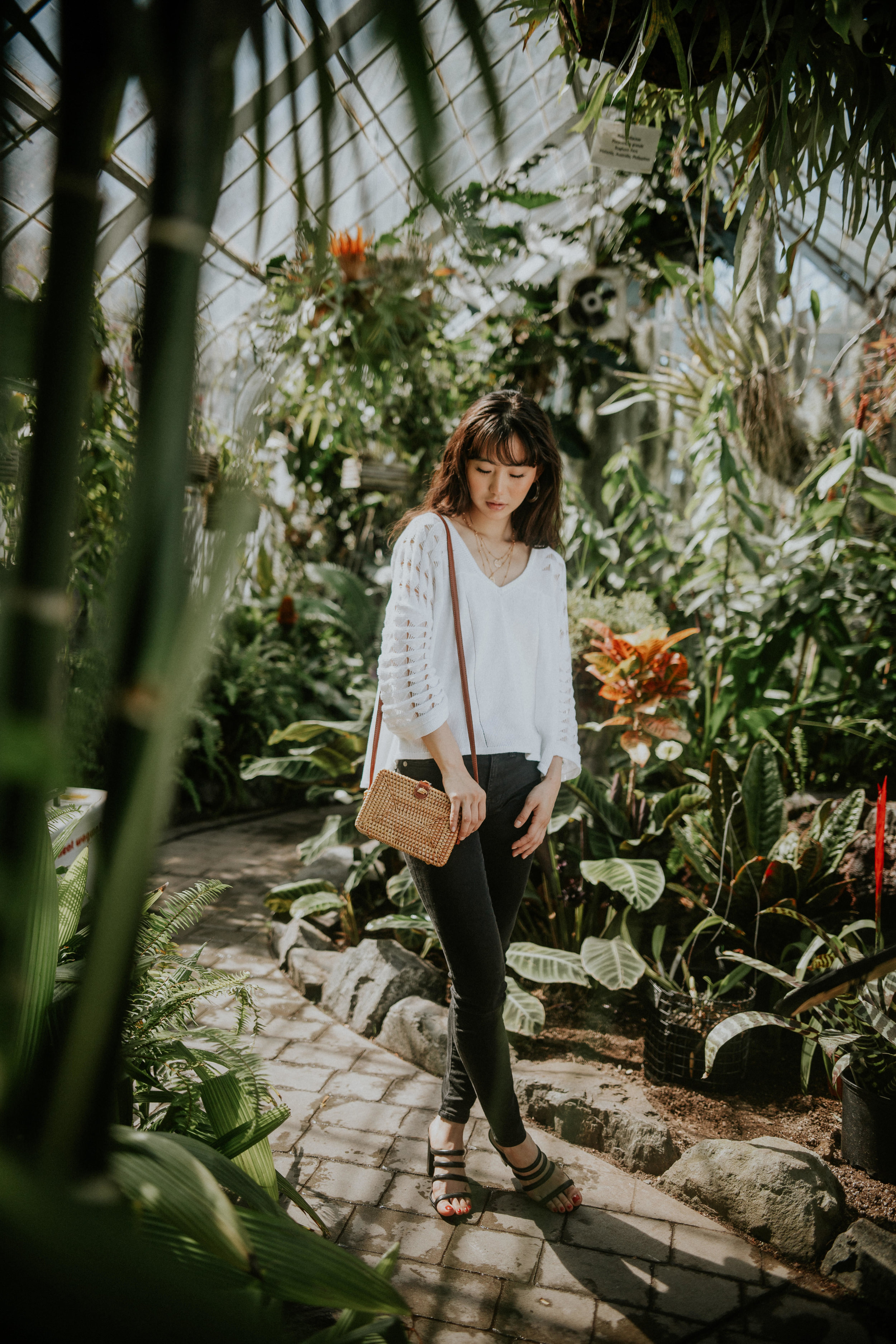 greenhouse fashion photography in austin texas