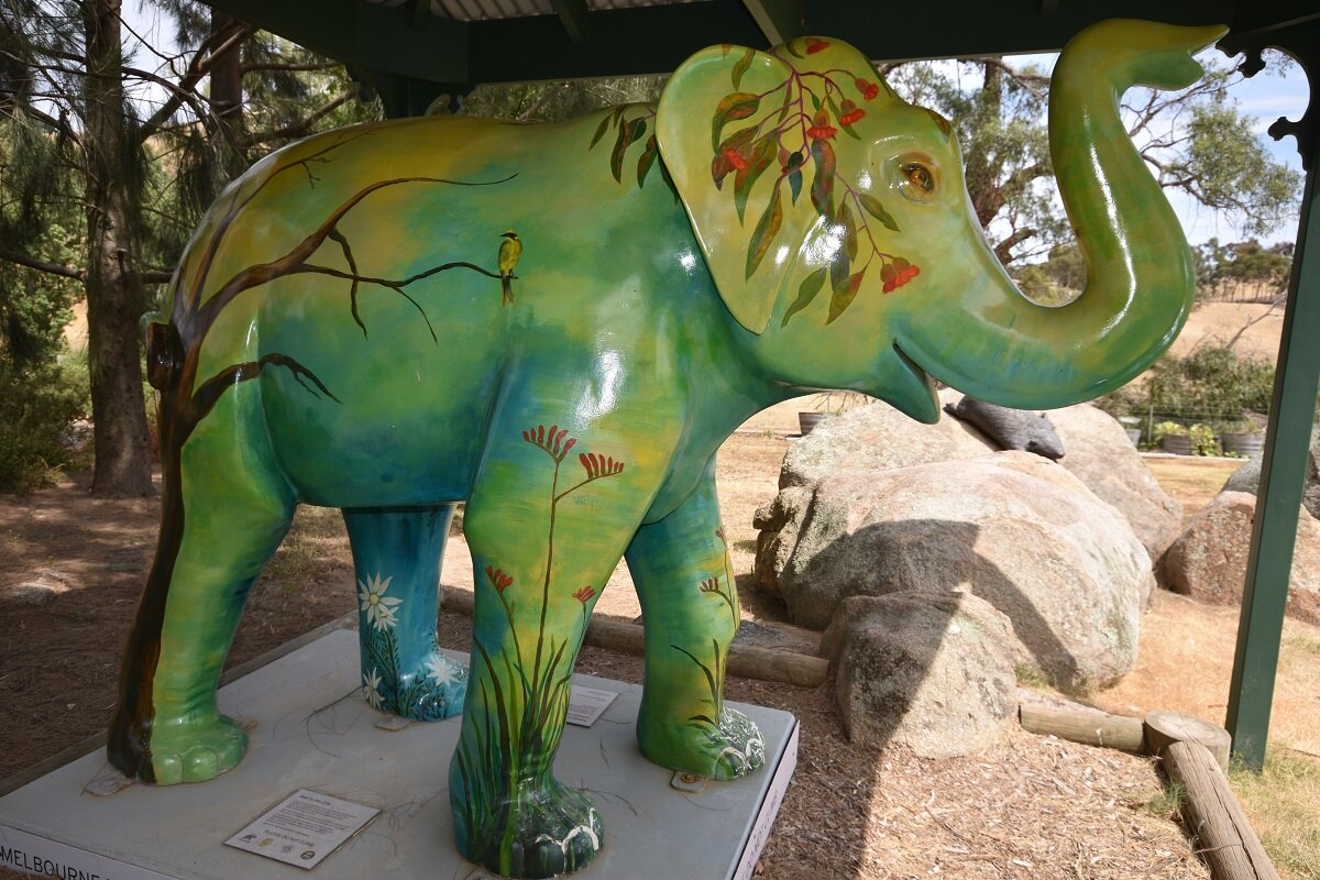 Mali's Story - In 2012, to Celebrate Melbourne Zoo's 150th year, 50 life-sized baby Mali elephants, painted by some of Australia's top artists, were put on display around the city of Melbourne. All 50 elephants were then auctioned off at Melbourne Zoo on October 25th to raise funds for wildlife conservation.Our proprietor was unable to make it to the auction but sent a relative to put in a bid. Unfortunately, 41 of the Mali elephants had already sold and, with bids coming in fast, it seemed unlikely that her submission would be successful. Just when it seemed all hope was lost, she got the phone call she had been waiting for; her bid was victorious!Not only did Merindoc Vintners acquire one of the immensely popular sculptures, but the Mali they had won was designed by Andrea Carydias, who had chosen this opportunity to raise the profile of the endangered Helmeted Honeyeater; the very same bird that decorates our Merindoc wine labels.Mali, who was fated to us, now sits in the Merindoc gardens, overlooking our orchard and vegetable garden beds.