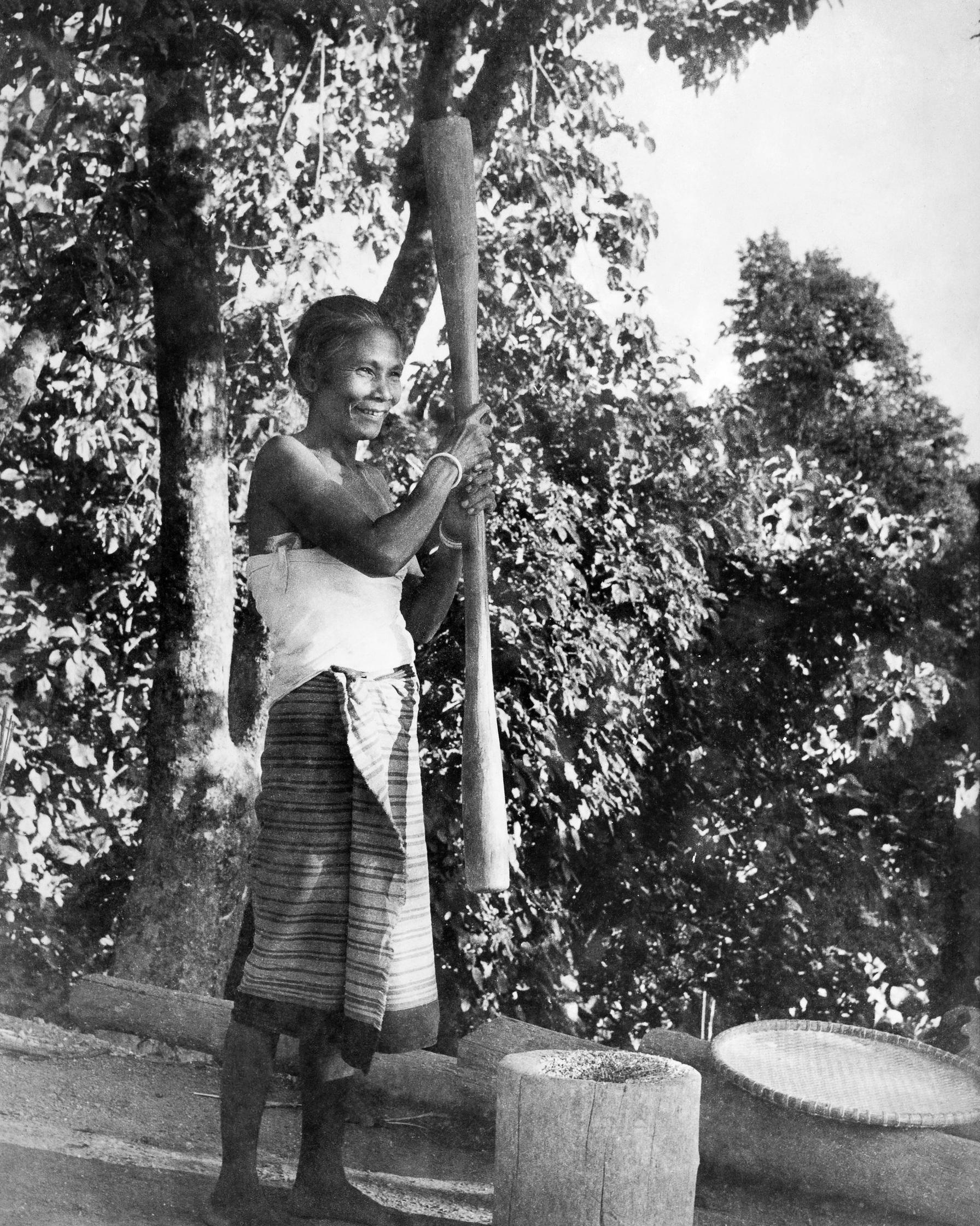 Tripuri woman wearing a short striped  rignai  and white  gamsa , crushing paddy using a wooden mortar ( rwsam ) and pestle ( romo ).  c.1977