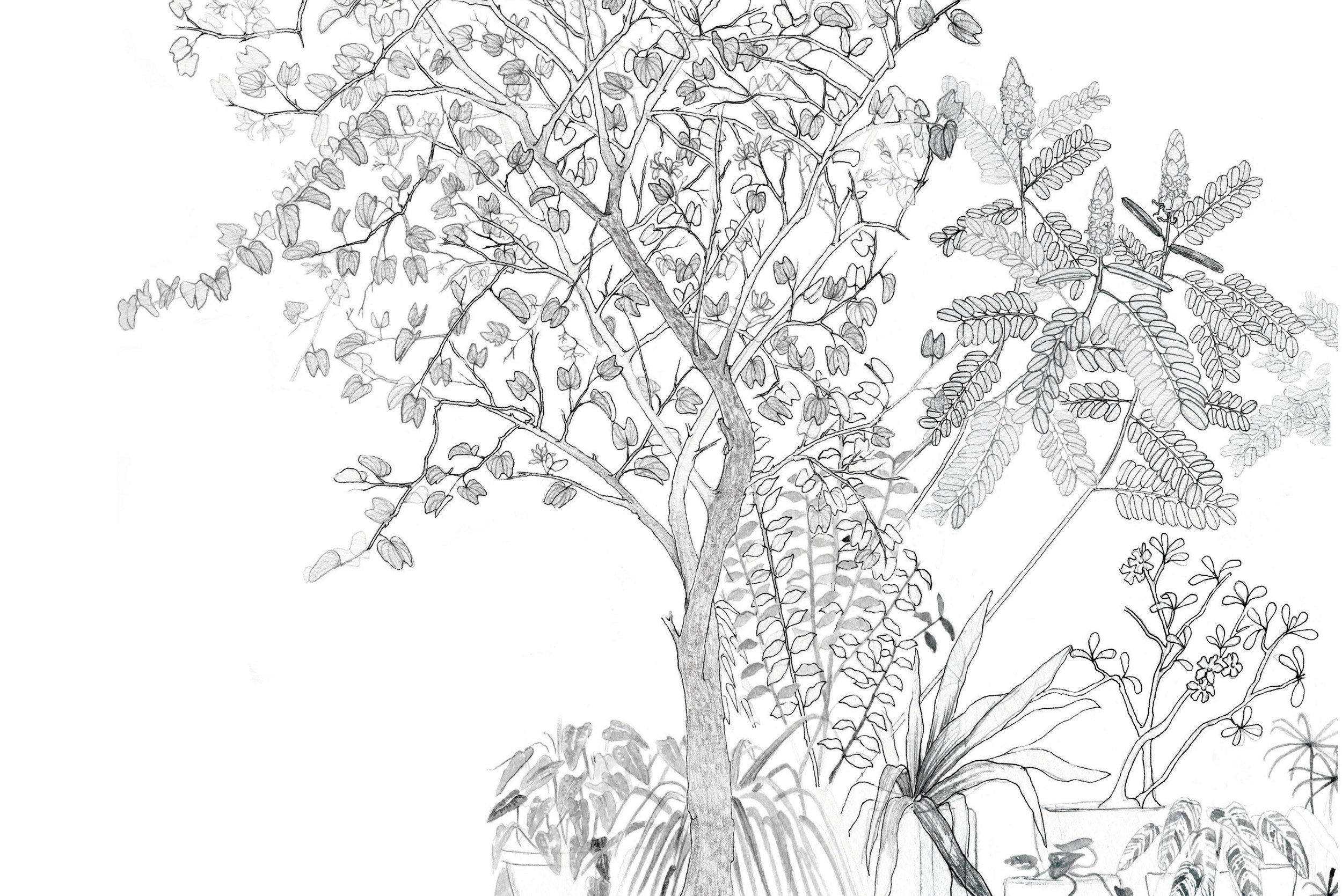 Wildgarden wallpaper_Flat_for WEBSITE7_RGB.jpg