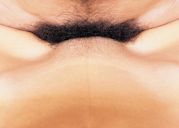 Forno Issue #4: Intercourse  (Photograph)
