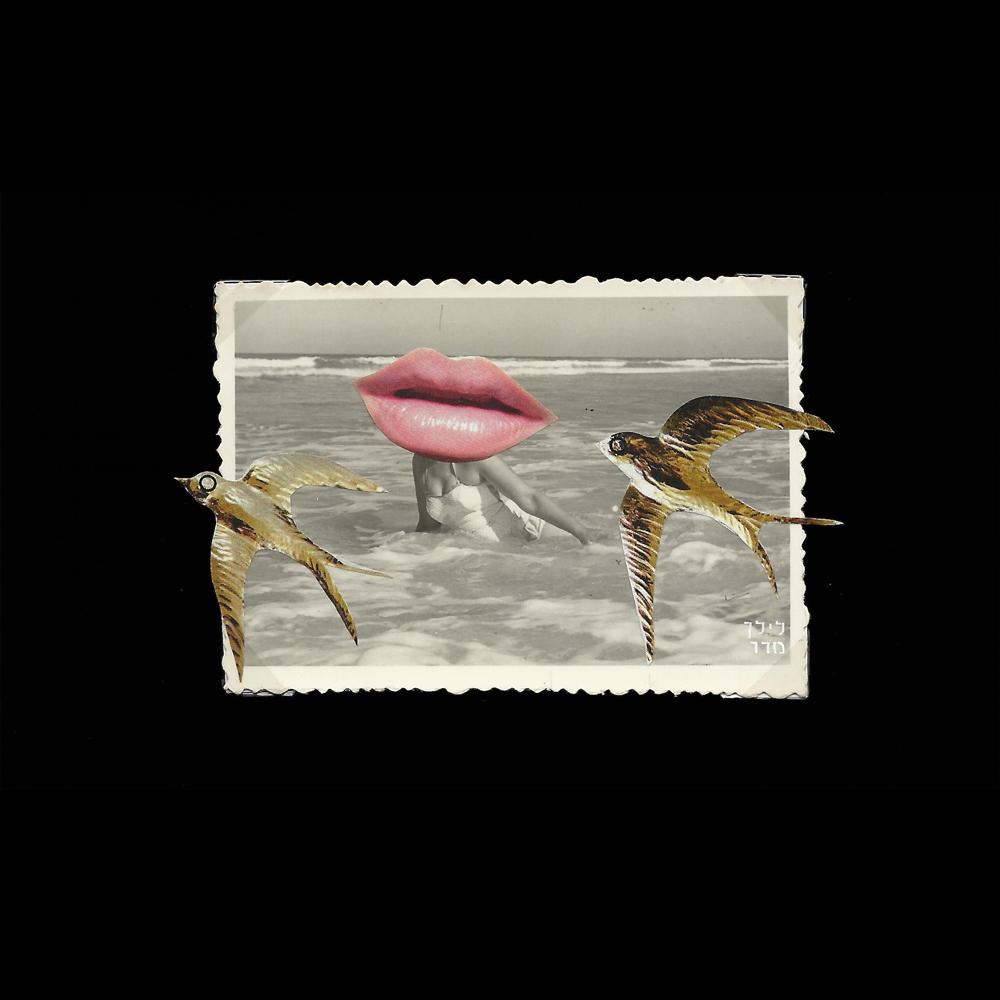 Lilac-Madar-Collage-BScan-009a.jpg