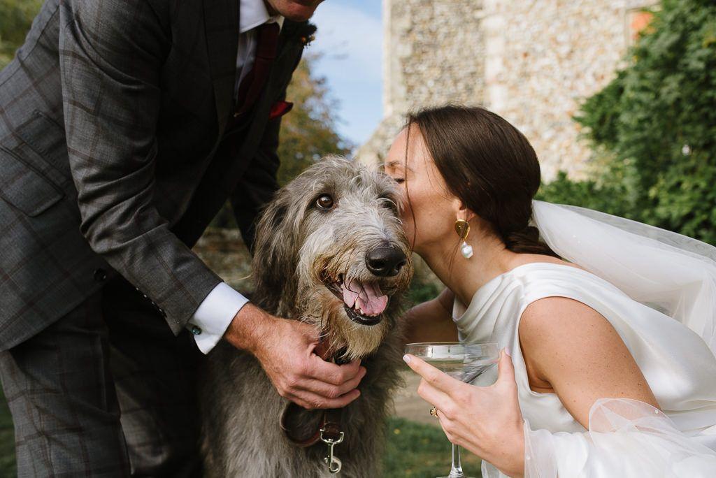 dogs-at-weddings-1.jpg