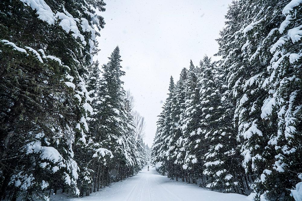 outdoor-sport-institute-team-osi-winter-activities.jpg