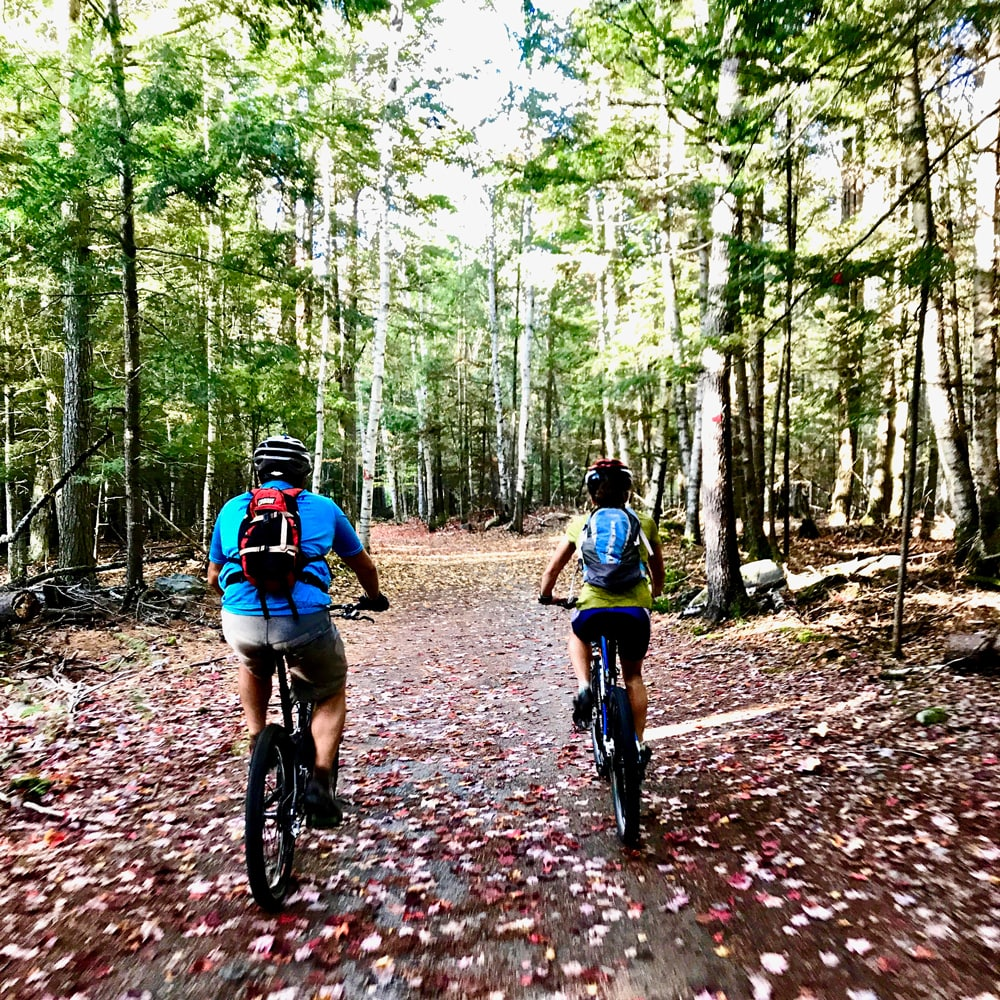 outdoor-sport-institute-Mountain-Biking.jpg