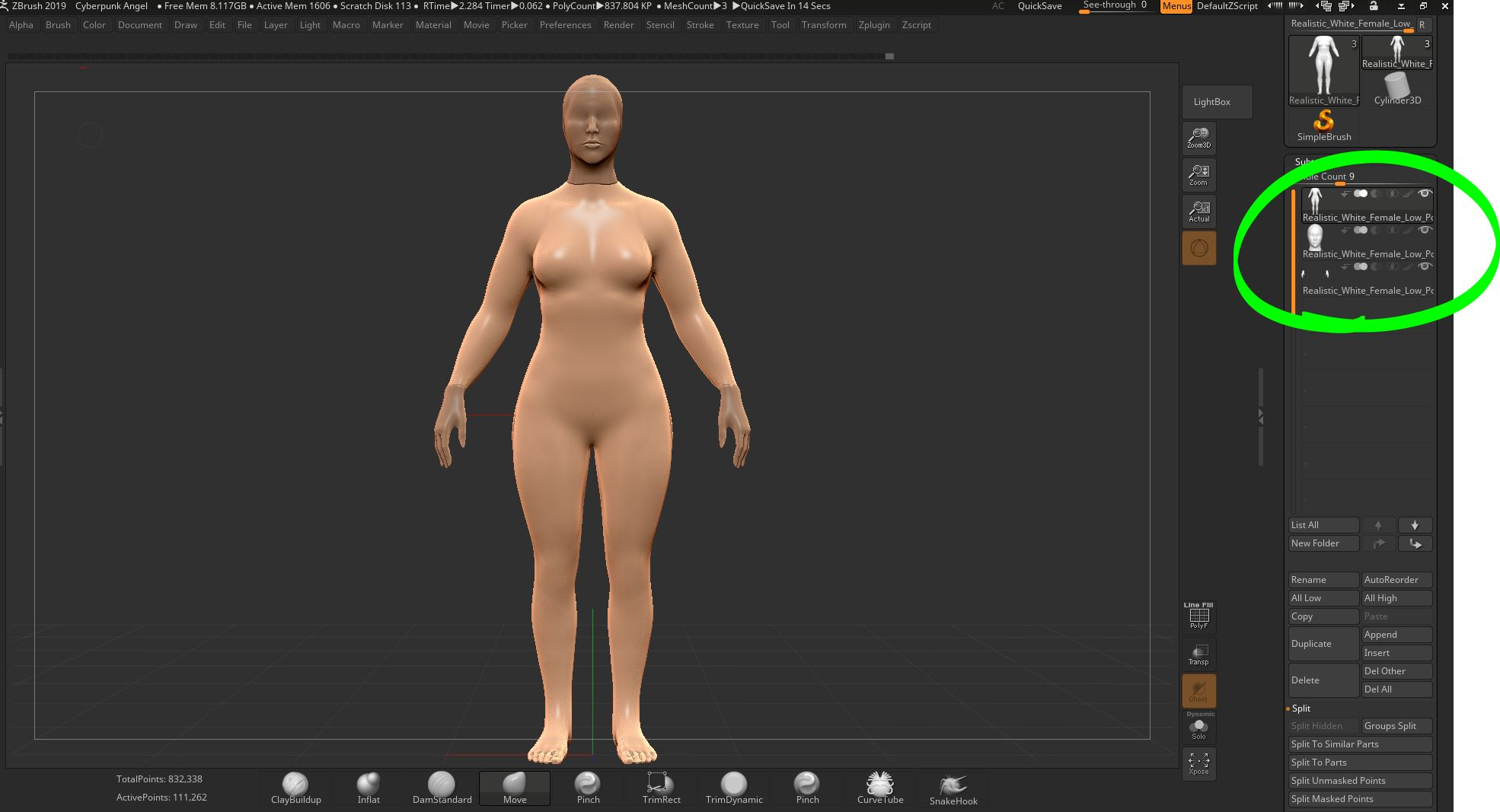 Base body - I took my base female body and lightly muscled her. I also made her hips and legs a bit wider. I felt they should look a bit stronger since she will have wings. Makes sense to me to have strong legs to kick off into flight.I split her hands, head, and body into seperate objects as noted in the subtool palette. (Check out green circle above)