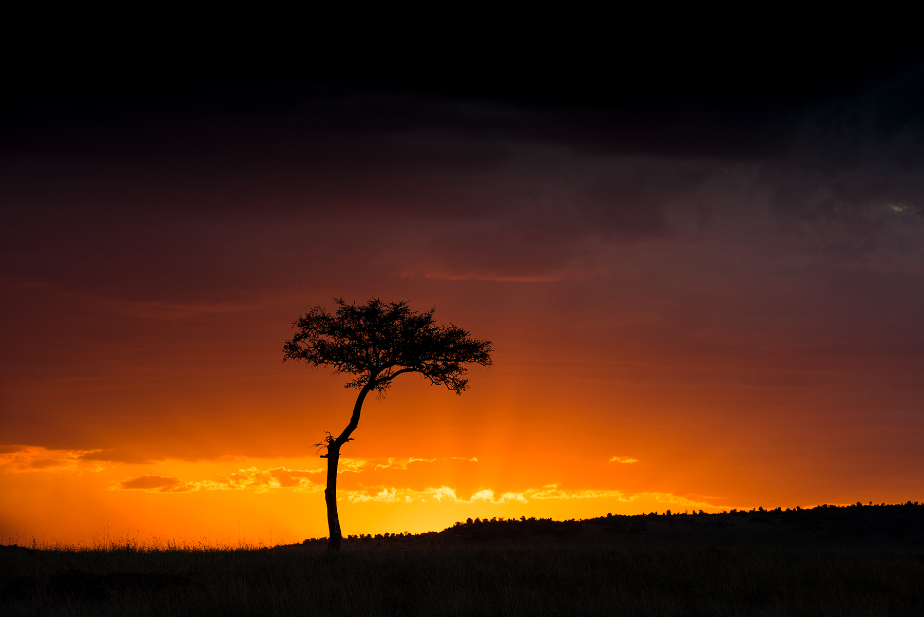 Sunsets in Africa flirt with the line that separates spectacular from unreal.