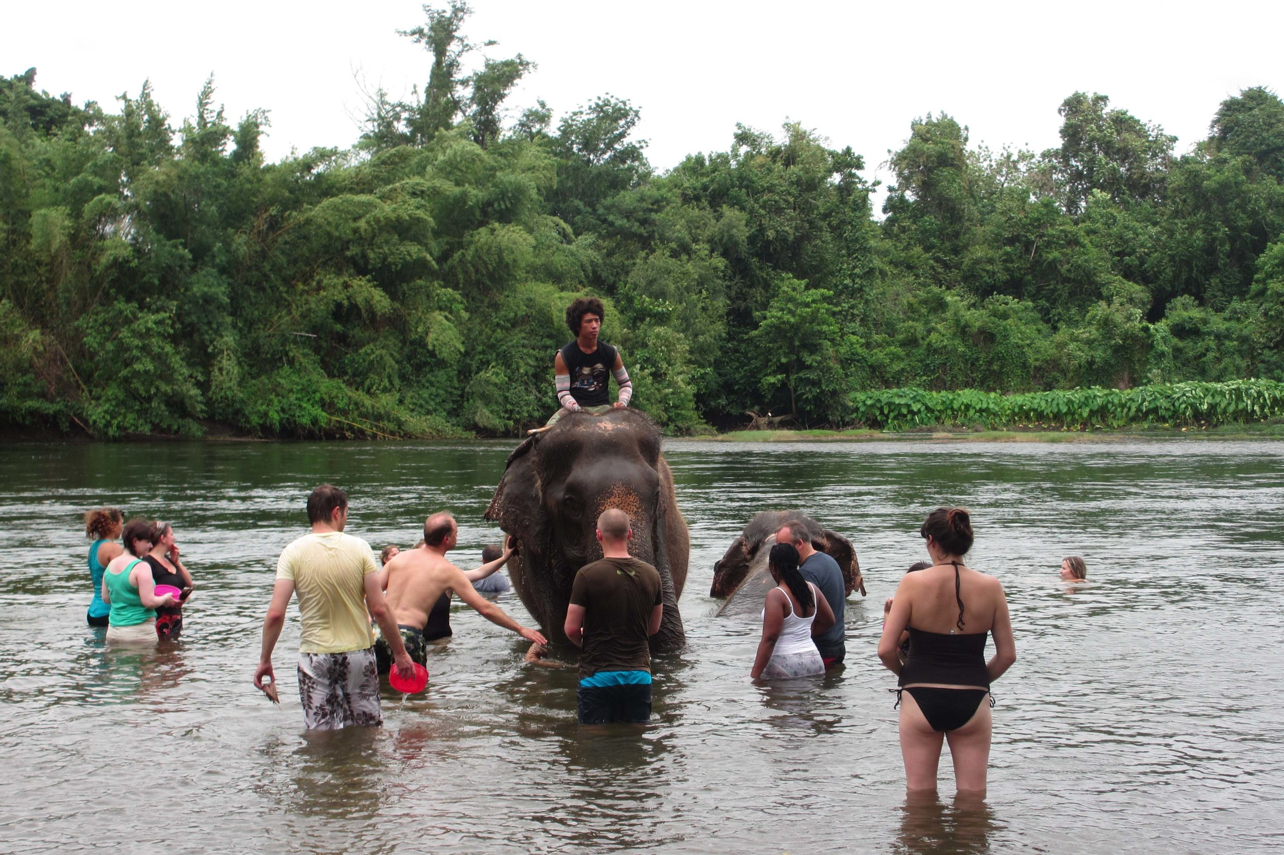 Tourists take a dip in the Khwae River to give two retired working elephants a good scrub-down with coconut husks at ElephantsWorld in Thailand © Sarah Reid