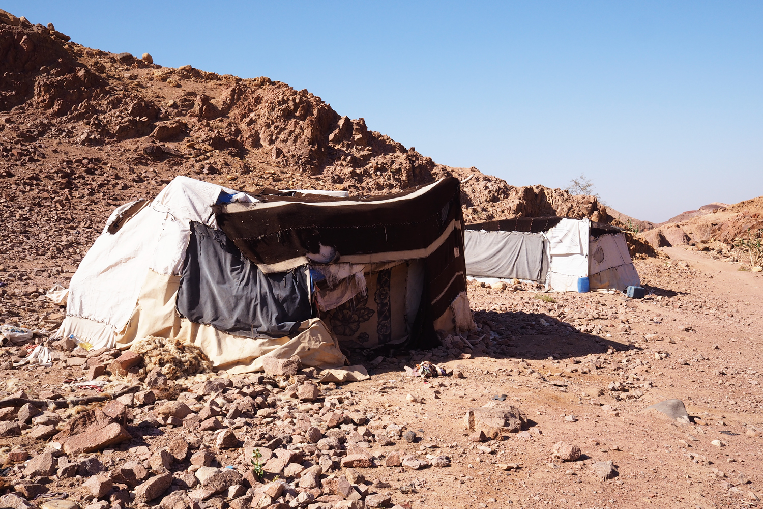 I hiked past several Bedouin camps near Feynan Ecolodge © Sarah Reid