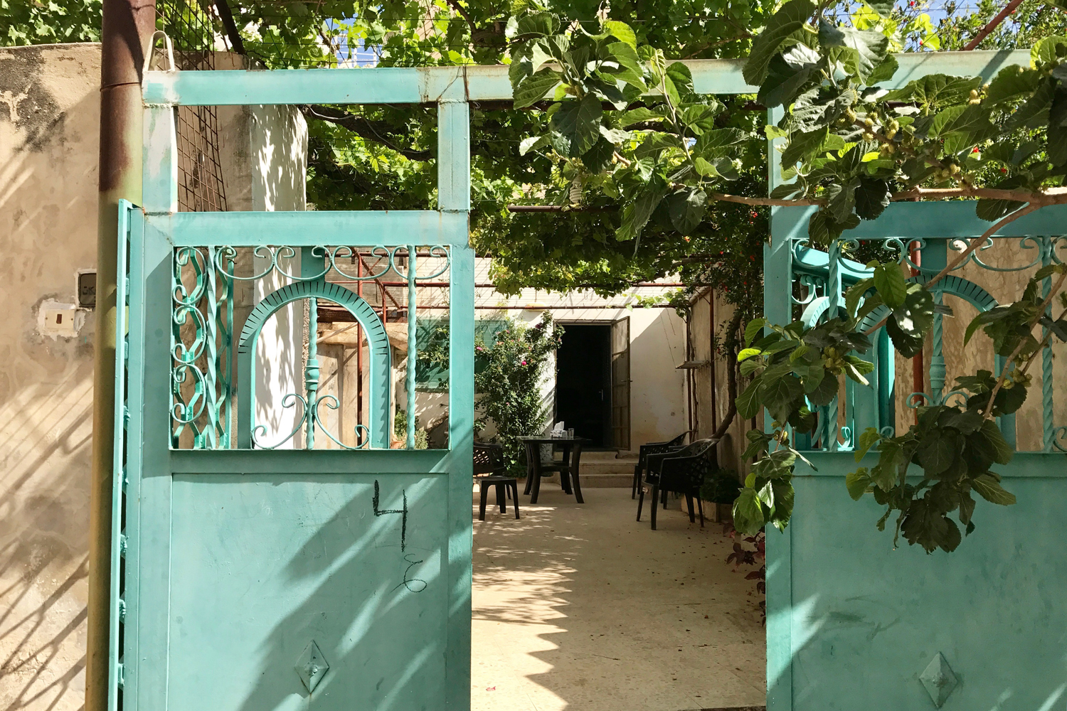 My room at the Orjan homestay opened onto a lovely courtyard shaded by grape vines © Sarah Reid