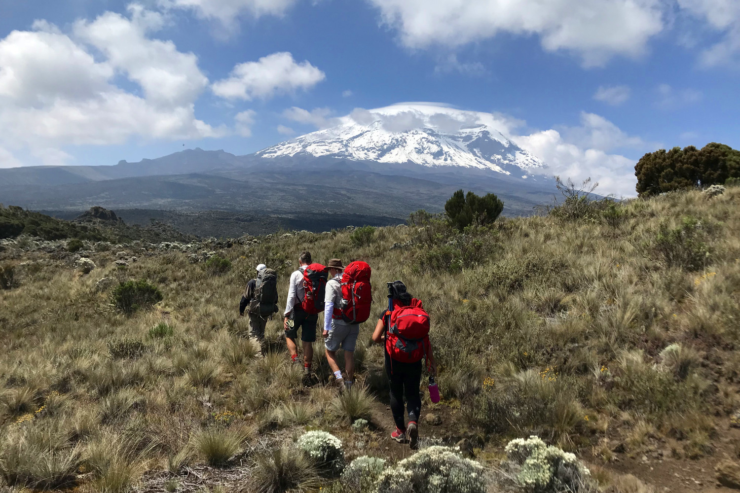 The views along the Lemosho route live up to the hype © Sarah Reid