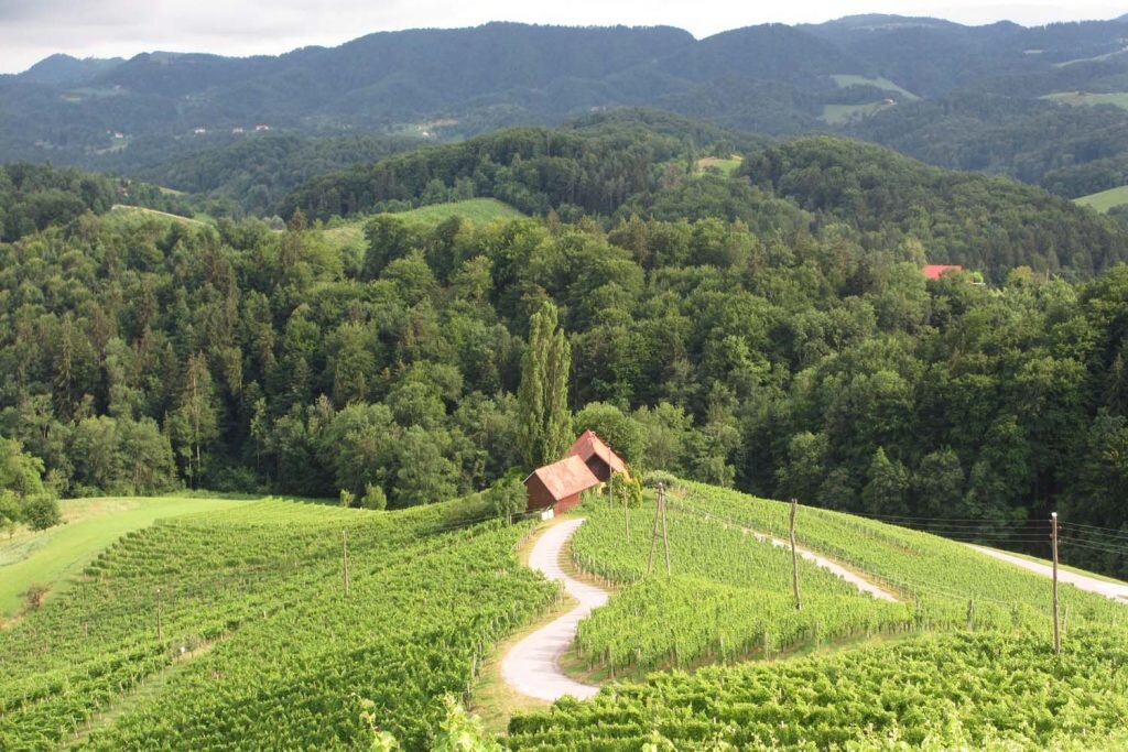 It's easier to travel sustainably in eco-conscious countries like Slovenia © Sarah Reid