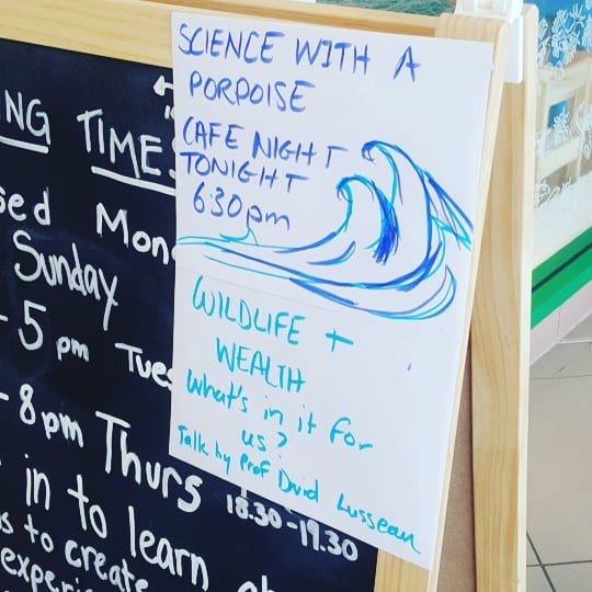 #sciencewithaporpoise #wildlife #wealth #Aberdeen #GreyhopeBay #popup #cafenights #science