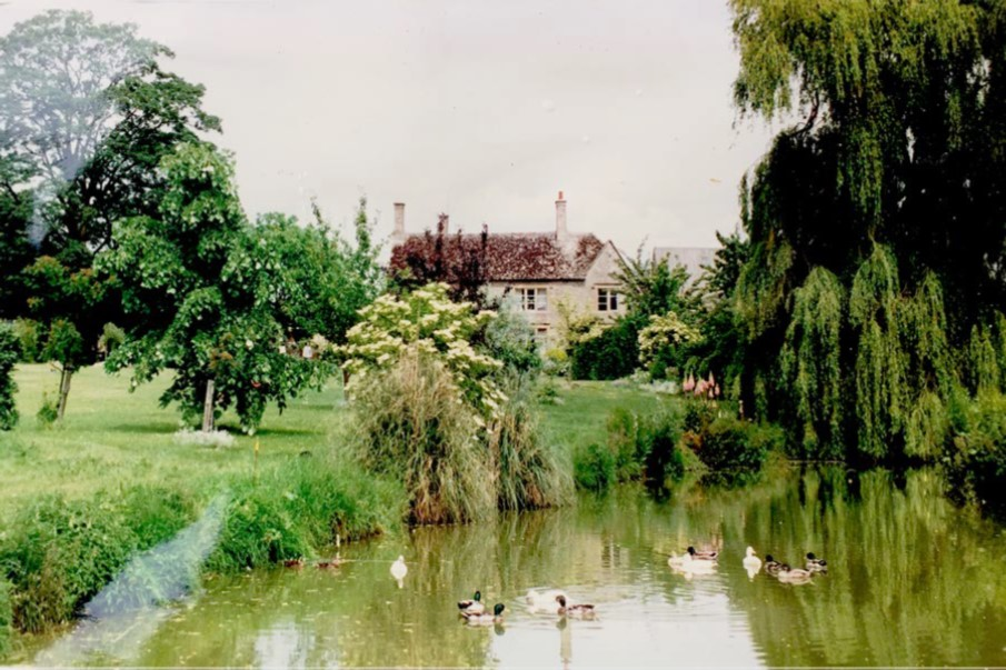 Farmhouse_old_pond.jpg