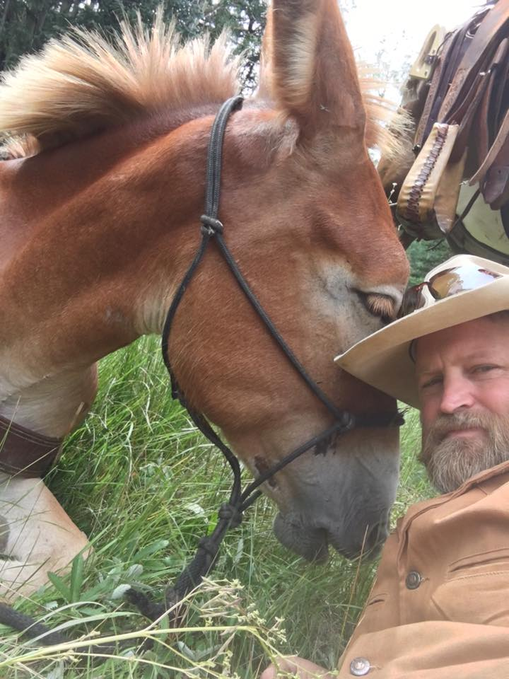 If it ain't half ass, it's just a horse!' Love my mules! Me and my girl Josie taking a break....and a selfie.