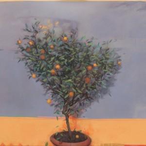 Alan Flood - Citrus Tree.jpg