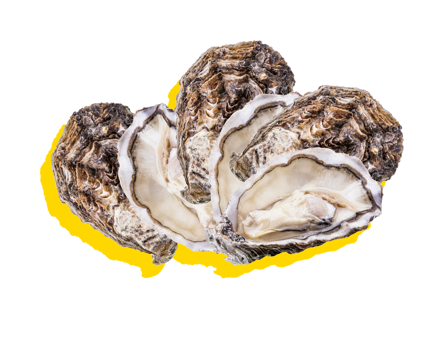 Silver-lining-about-happy-hour-oysters.png
