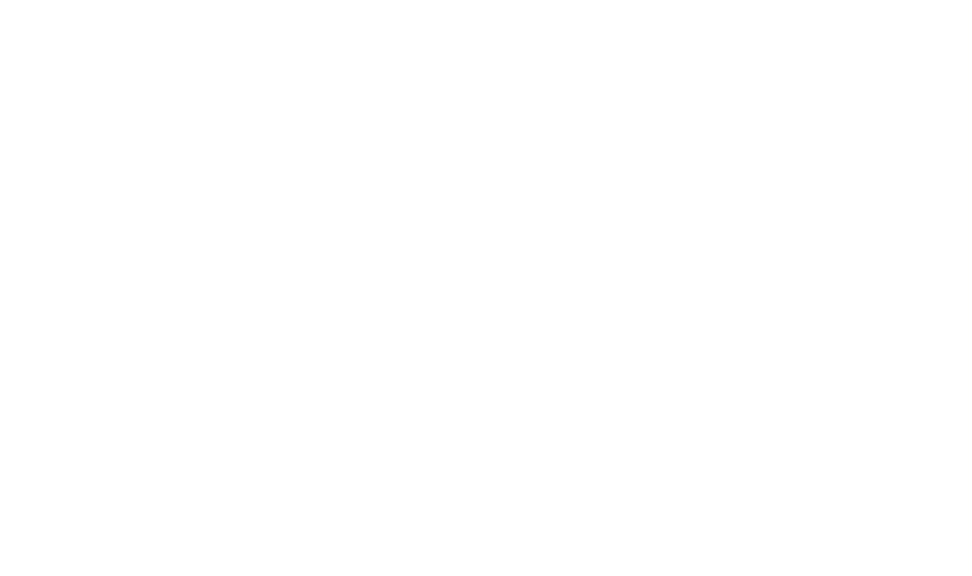 Lively logo in white