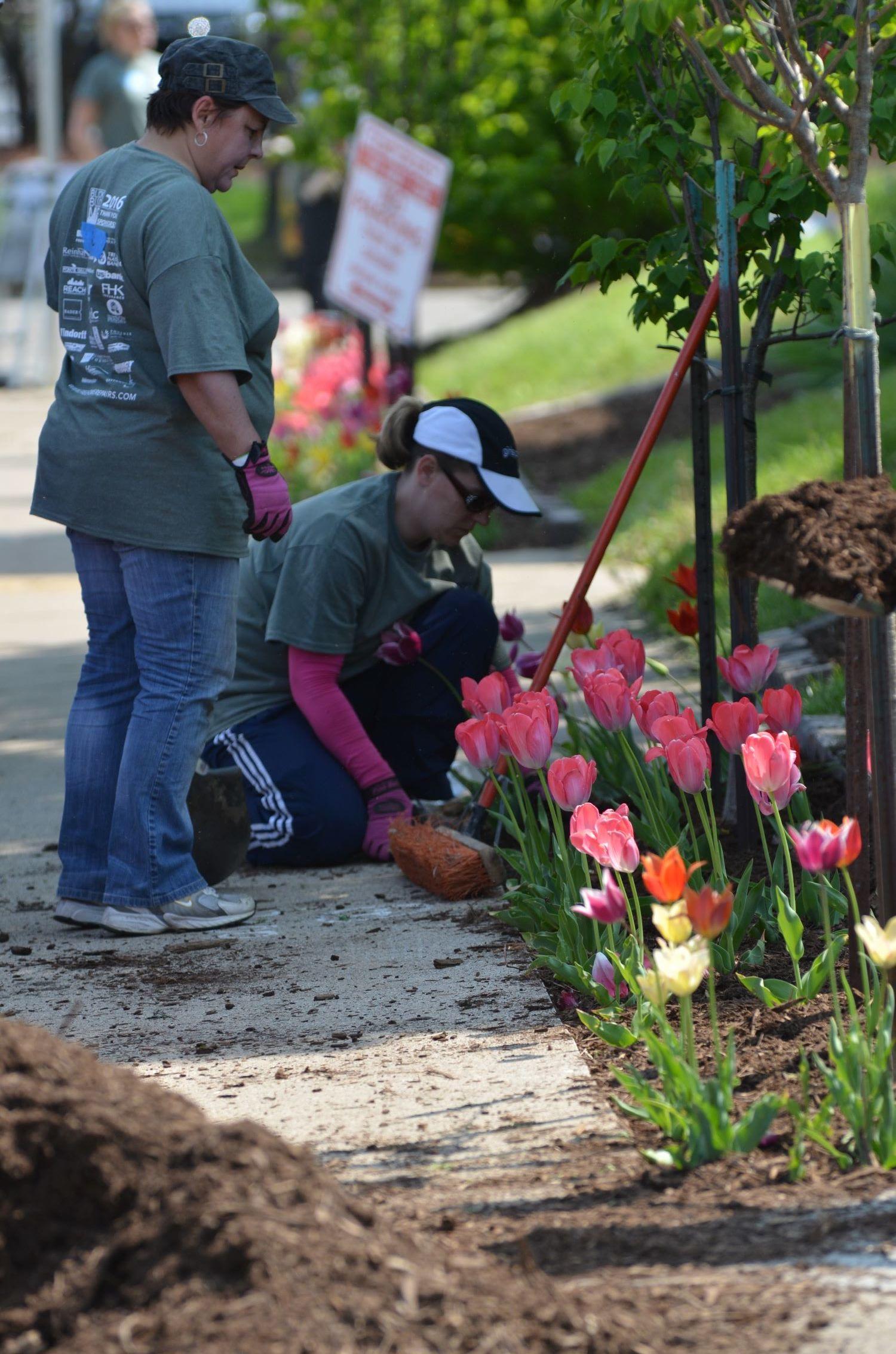 Two volunteers planting flowers.