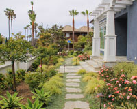 La Jolla Cape Garden