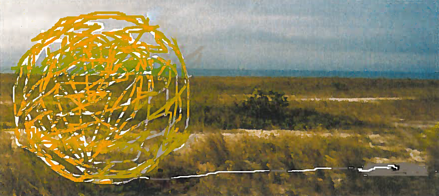 TUMBLEWEED | Draft for 8' Sphere, Plastic & Steel, 3 light weight plastic spheres (tumbleweed) each attached to a steel plate with length of cable so spheres can be moved by the wind.
