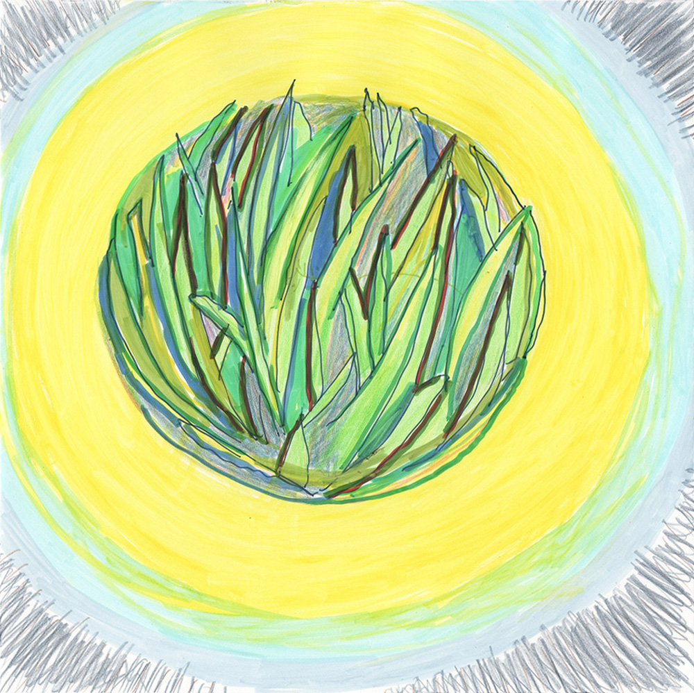 Grass I (2016), 20 x 20 cm, india ink marker and watercolor pencil on stone paper, sold