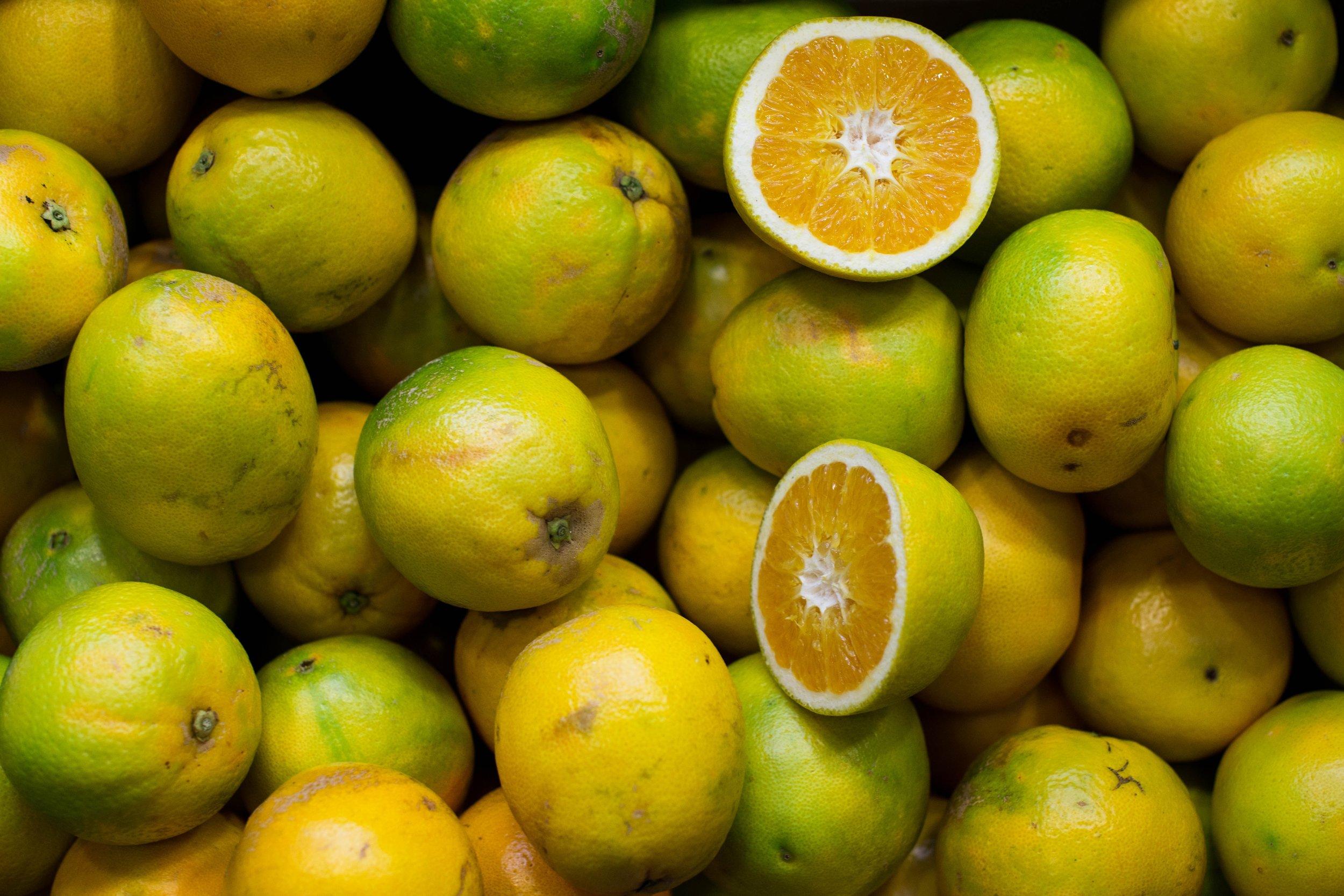 bloom_candyfloss_lemons_organic_gallery_picture_number_3.jpg