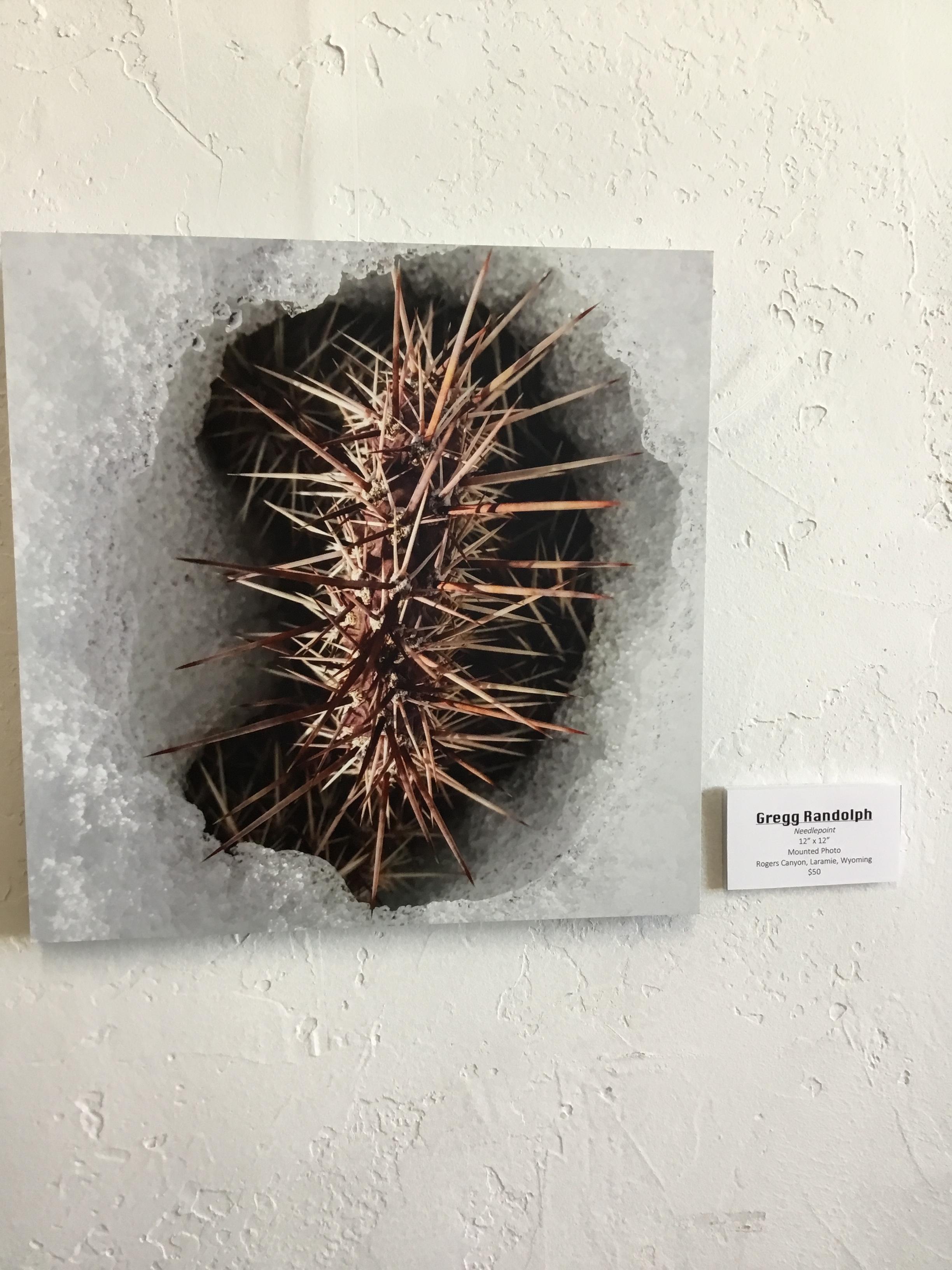 'Needlepoint'. Gregg Randolph.  Small Worlds Exhibit