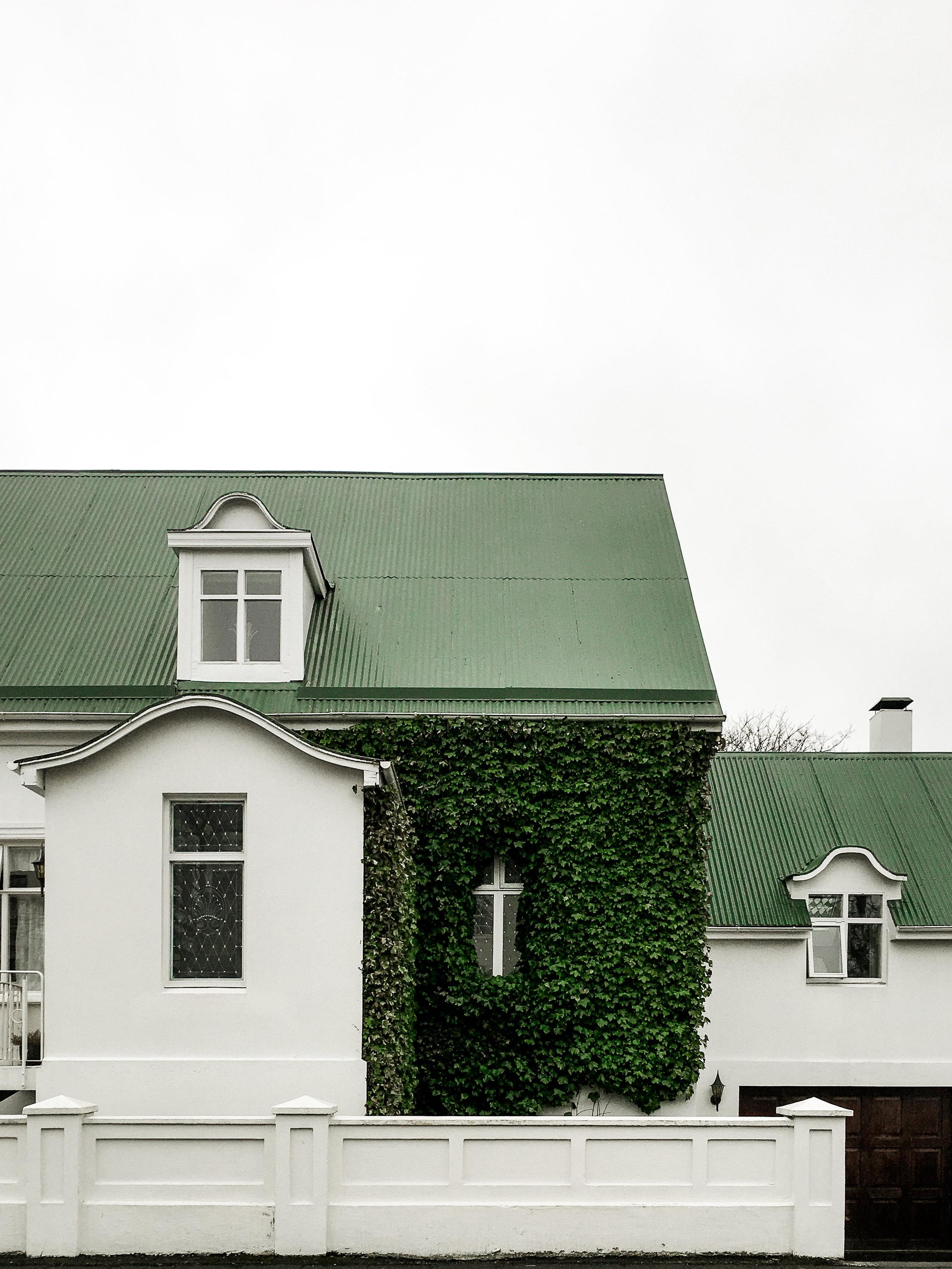 Iceland-4875.jpg