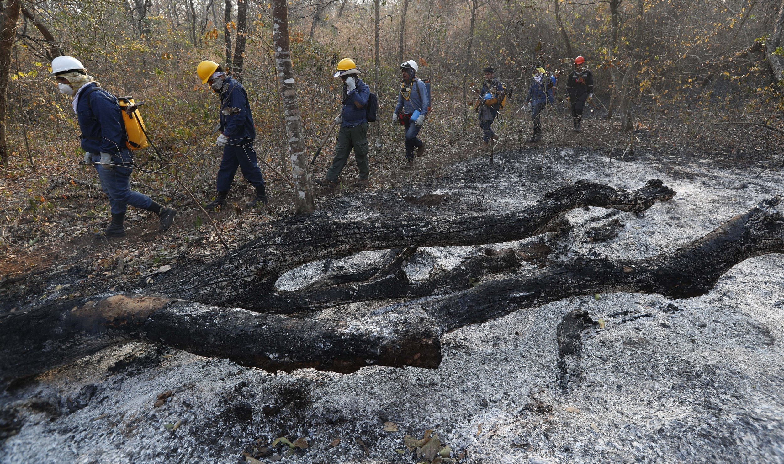 Volunteers walk past an area scorched by fires in the Chiquitania forest on the outskirts of Robore, Bolivia, Thursday, Aug. 29, 2019. While some of the fires are burning in Bolivia's share of the Amazon, the largest blazes were in the Chiquitania region of southeastern Bolivia. It's zone of dry forest, farmland and open prairies has seen an expansion of farming and ranching in recent years. (Juan Karita/AP)