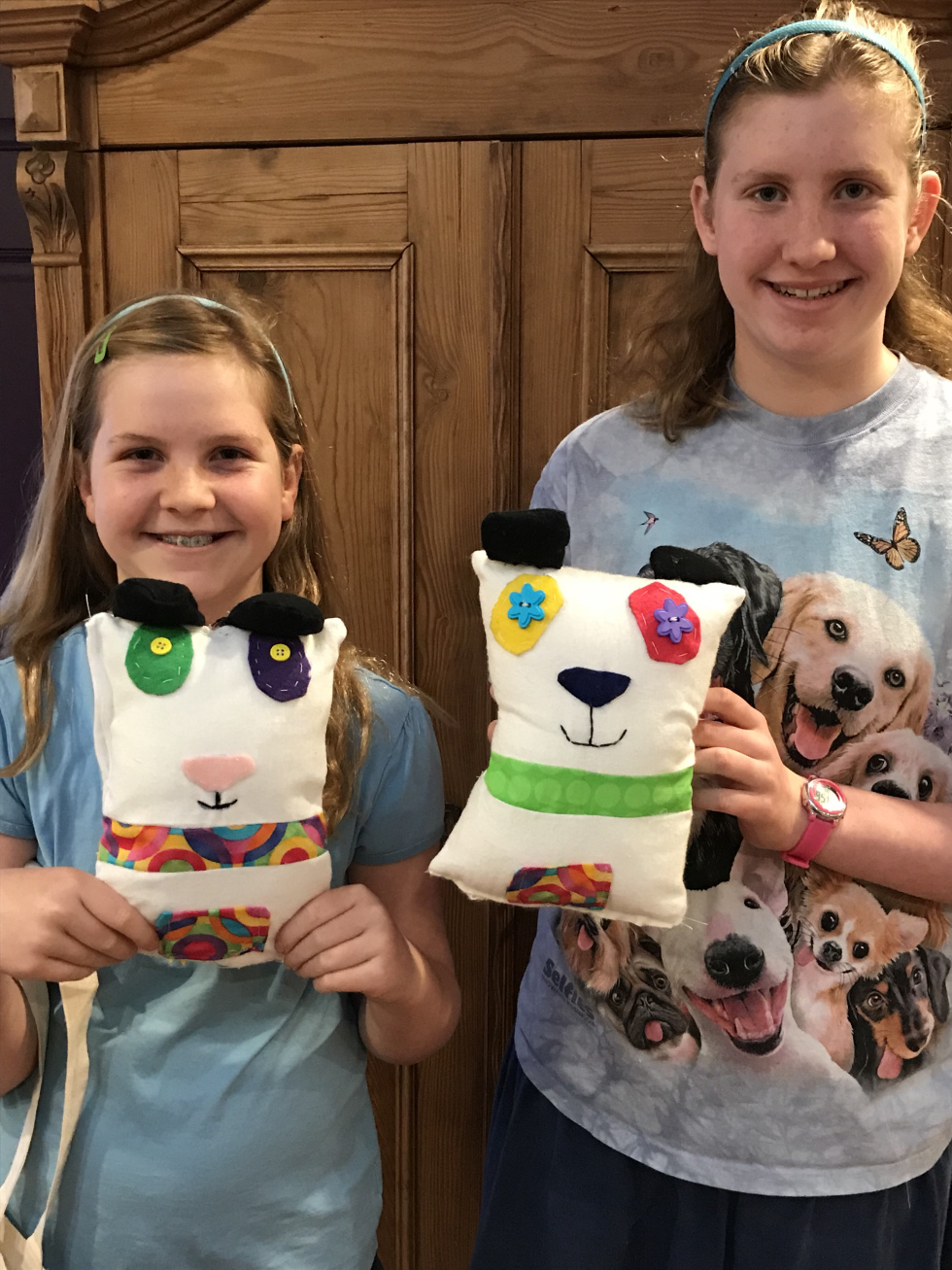 11 year old birthday party (with older sister) pandas!