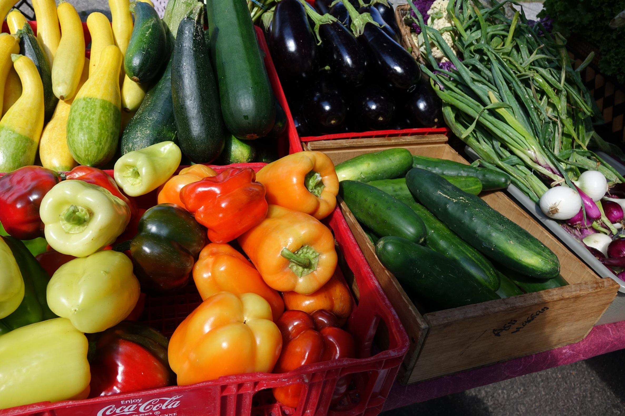 Wholesale - Fresh locally-grown produce