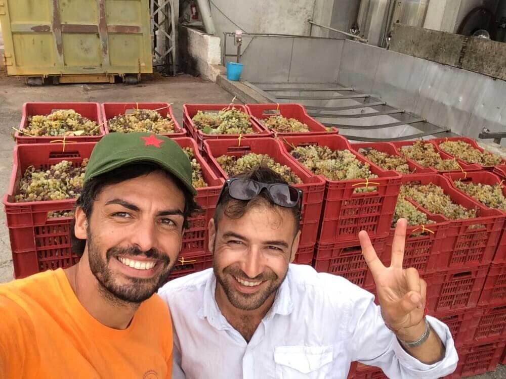 Nicola and Guido, Elios natural wines