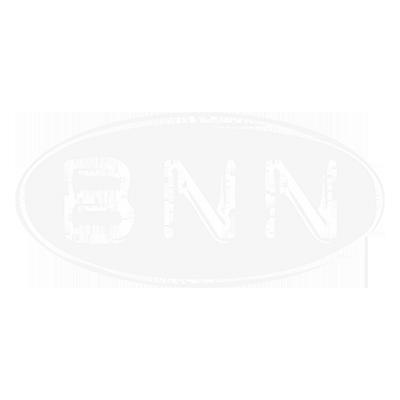 BNN.png
