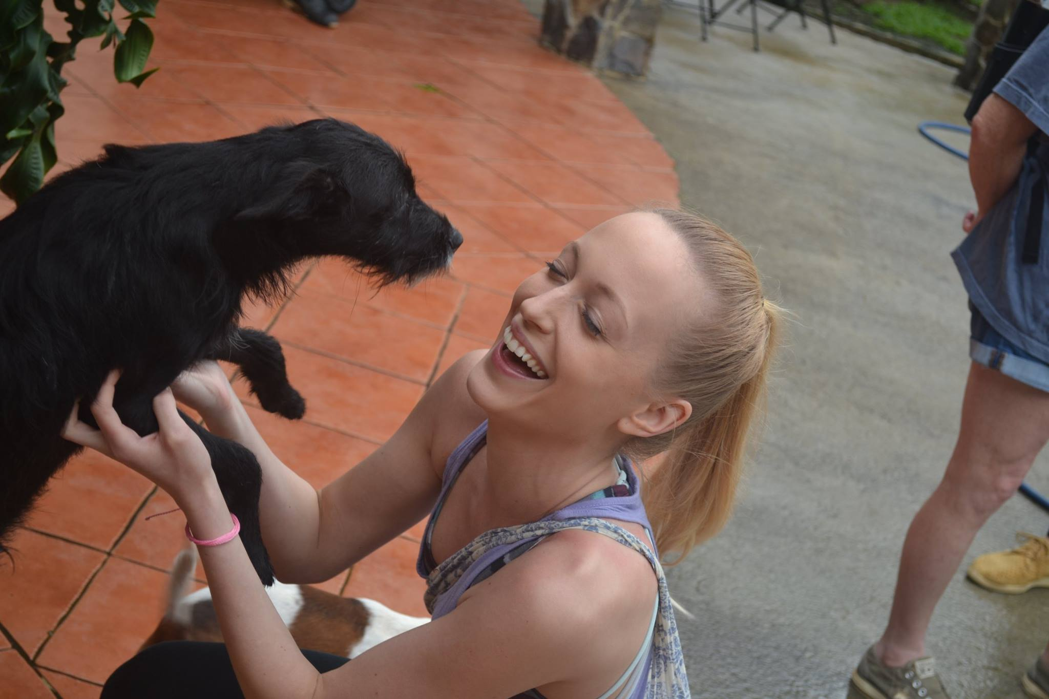 Dog Rescue 2017 Amanda.jpg