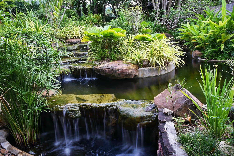 Garden6 - Water Garden-2.jpg