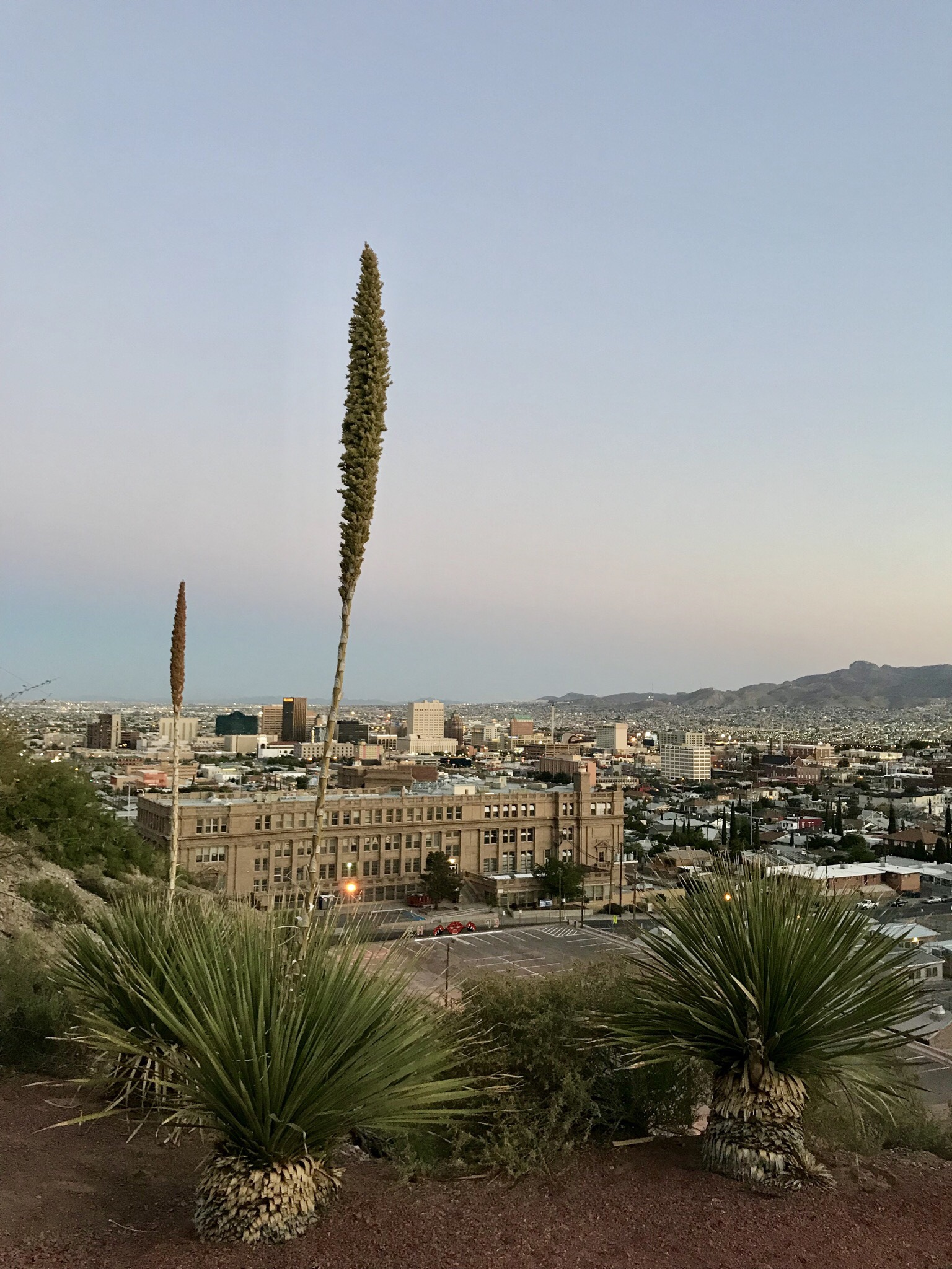 Peering toward the southeast over the ledge of a park up above downtown El Paso, TX at sunset.