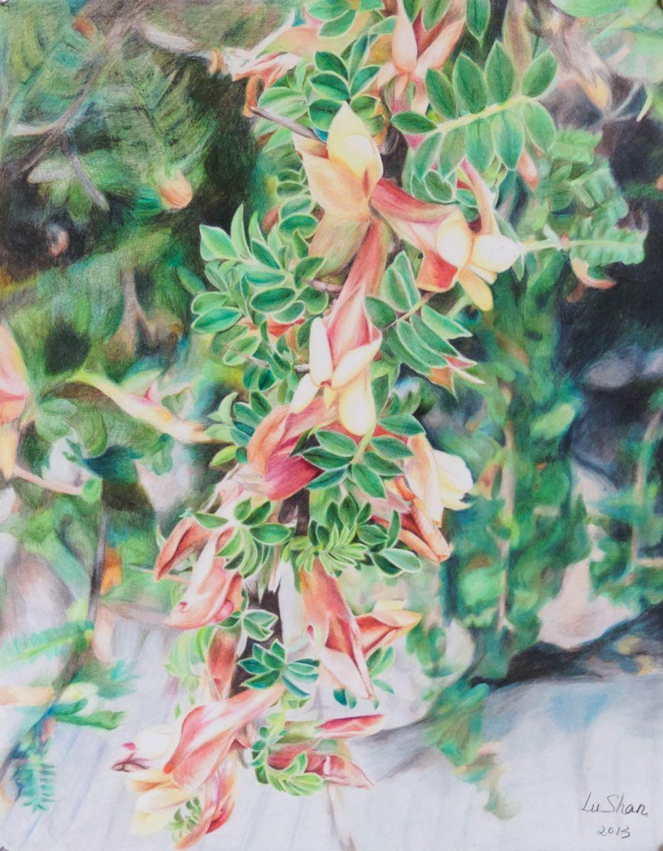 gallery18967_1.jpg