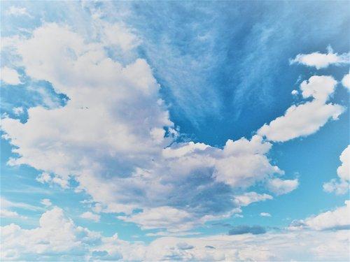 Cloud Database Management
