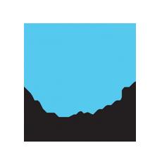 Platinum Guild International.png