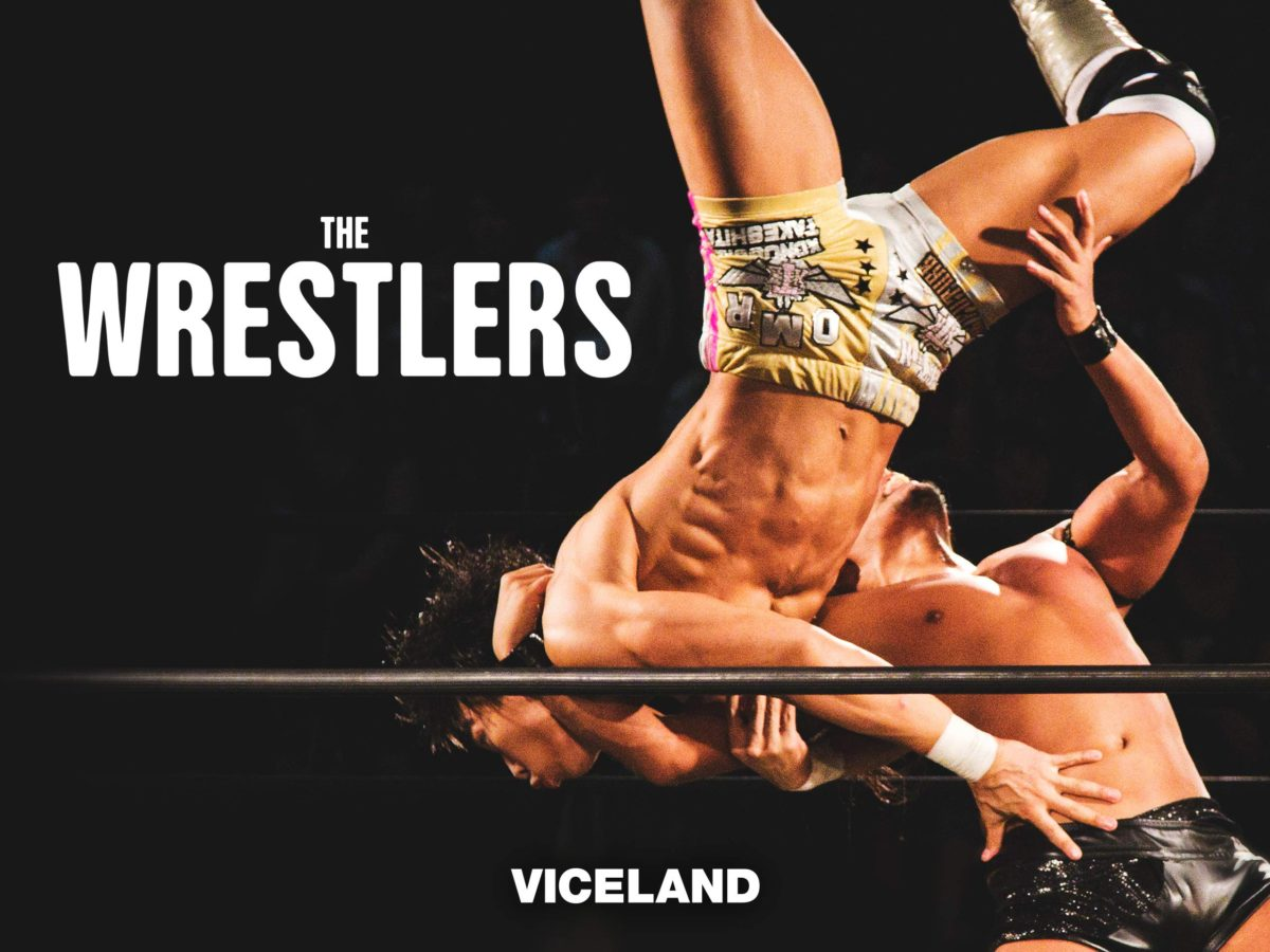 THE WRESTLERS (VICELAND)