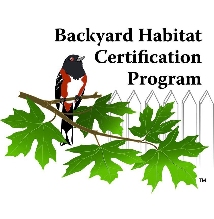 BHCP logo.jpg