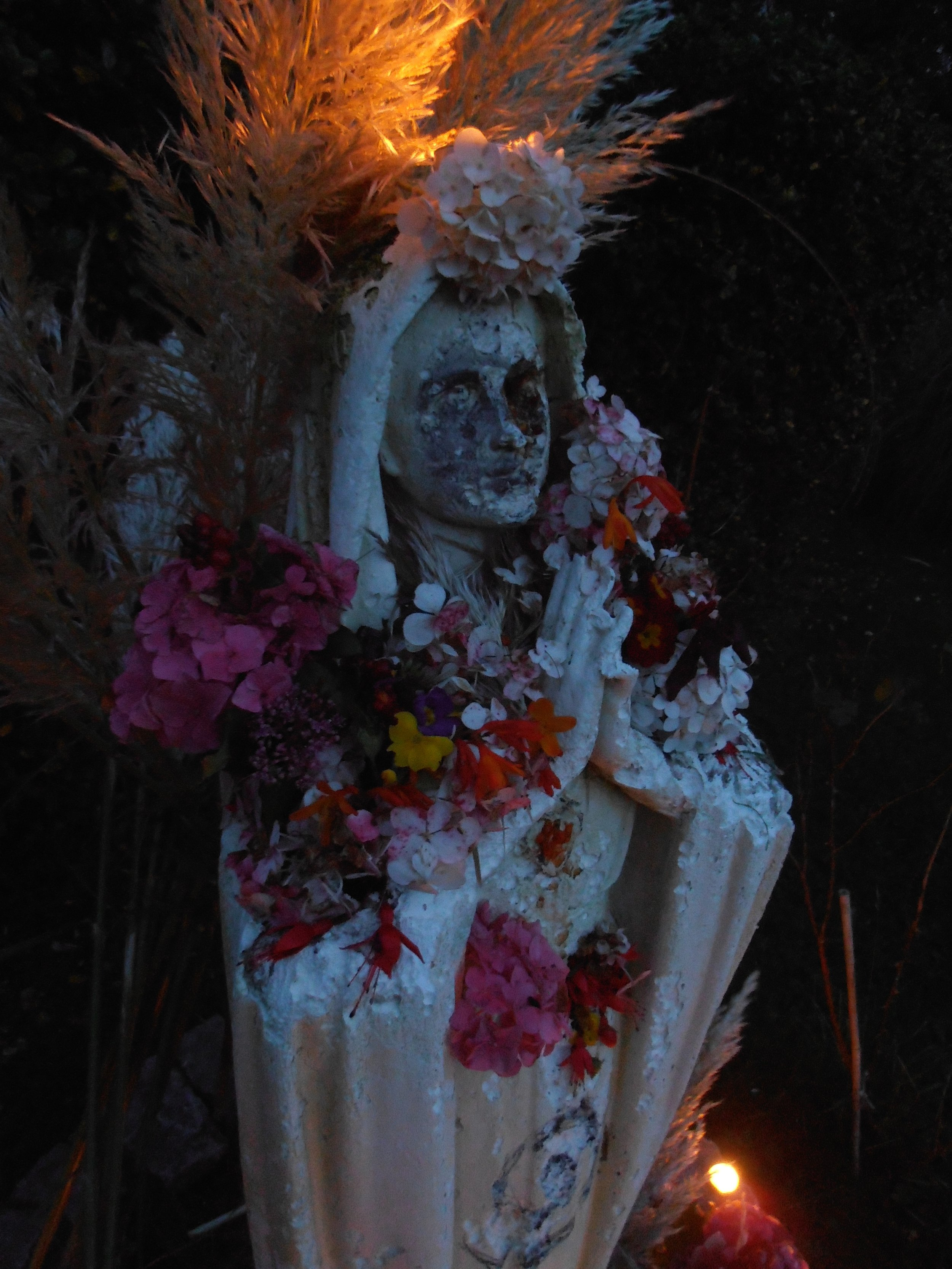 Our Lady of Decay