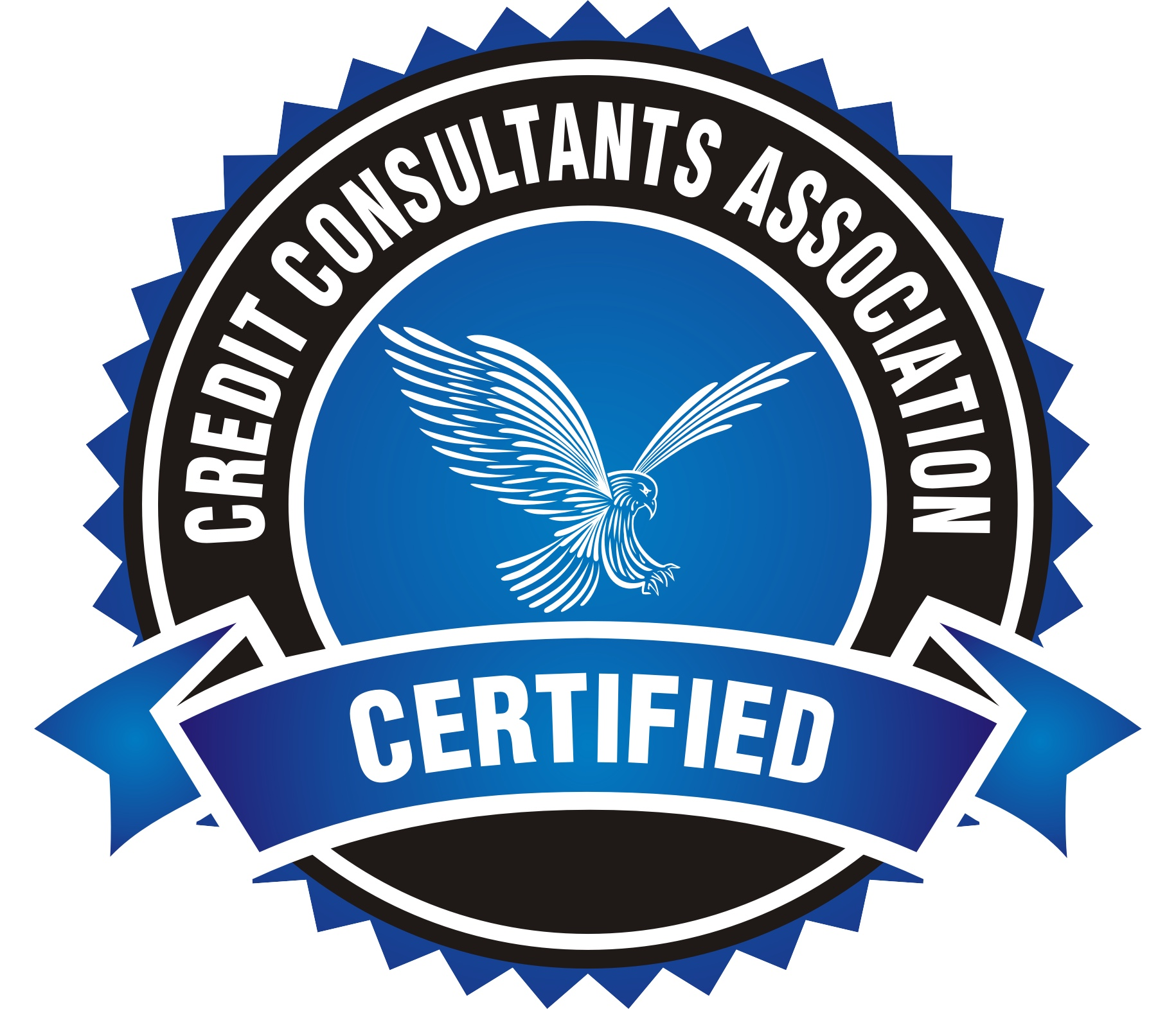 Every team member is a Board Certified Credit Specialist so you can feel comfortable knowing you are in good hands. We use factual disputing to challenge items under one of the federal consumer protections laws (FCRA, FDCPA, FACTA, FCBA, HIPAA, etc.). We will be your voice and communicate with the credit bureaus, collection agencies, and creditors on your behalf to ensure that your credit report is reporting with accurately within accordance of the law.